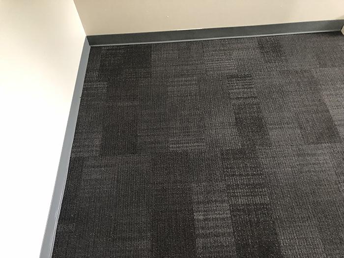 NanoMAXX Organic Carpet Cleaning Product