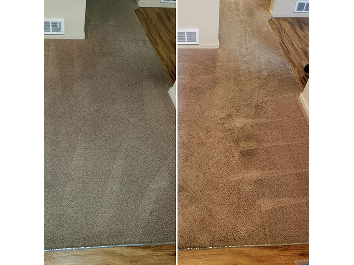 Green Carpet Stain Removers